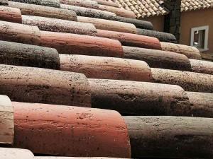 Textura de las tejas curvas Centenaria® Tierra